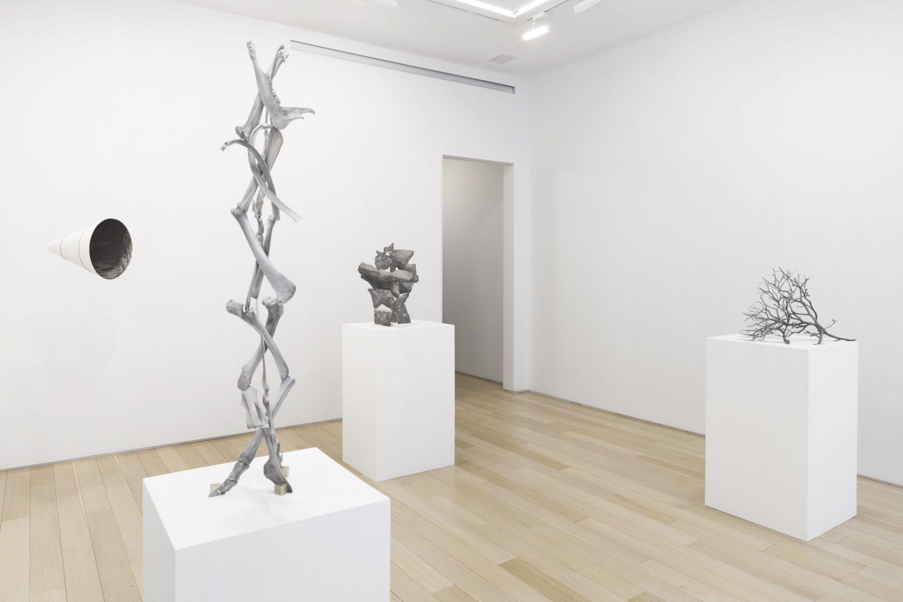 Gallery installation View, 2019