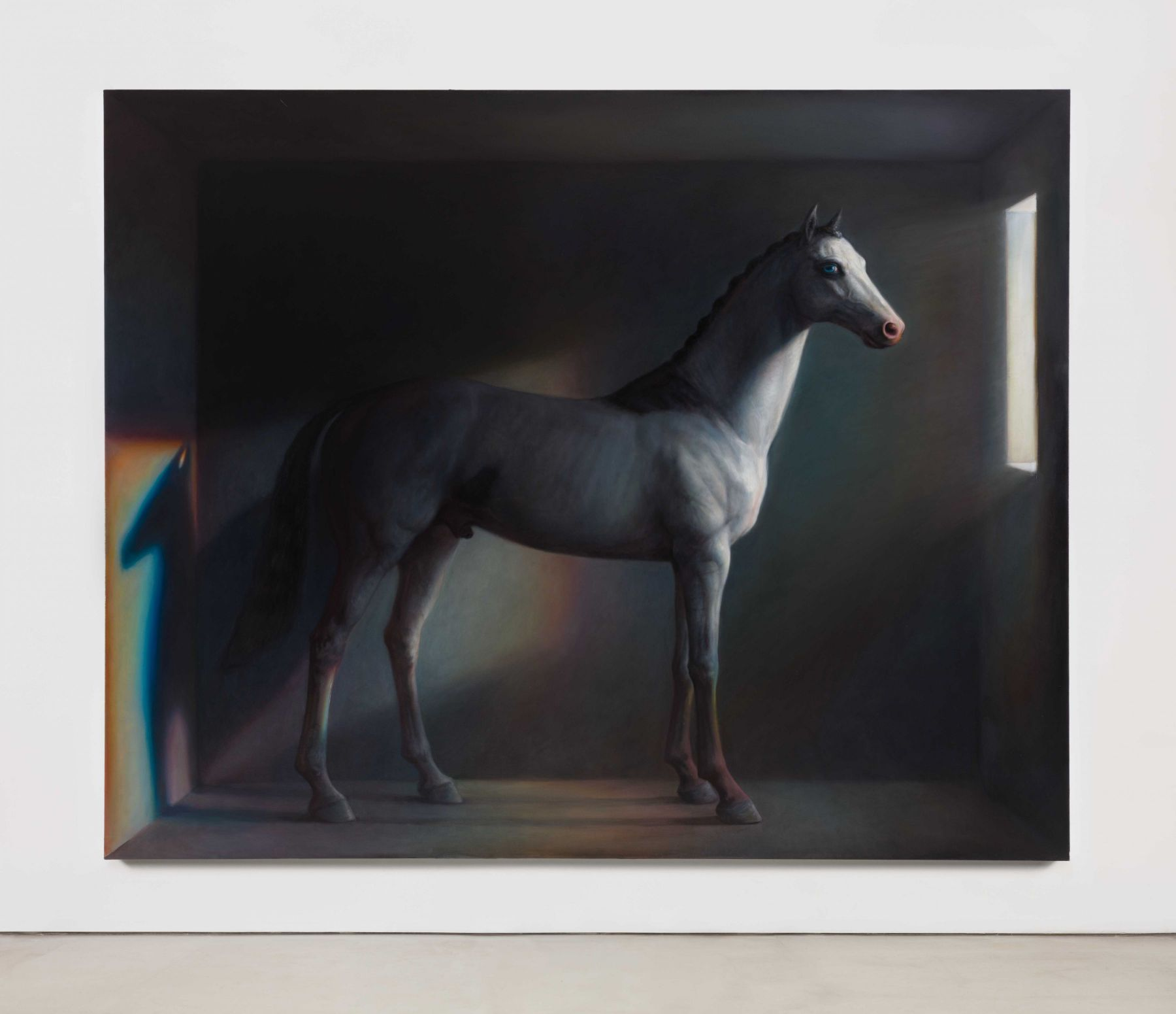 TM Davy, Horse (x)