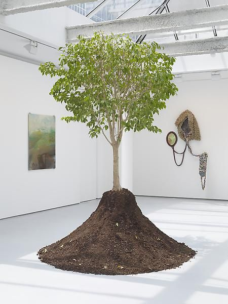 goldiechiariGenealogy of Damnatio Memoriae, Stay Behind, 2011Hand-carved Ficus Benjamina, plastic container and saucer, soilApprox. height: 96 inches (243.8 cm); Installation dimensions variable