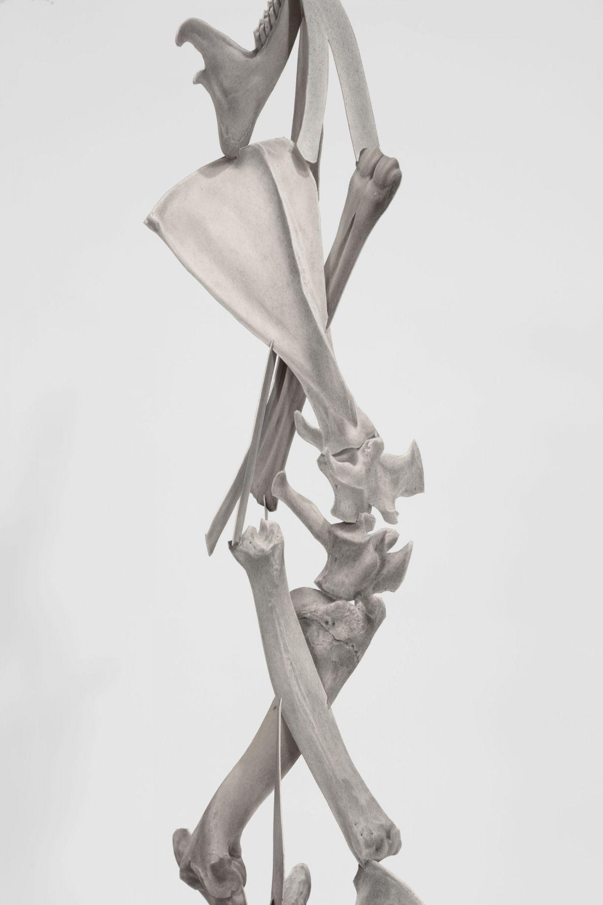 Bones of a Young Doe [detail], 2018