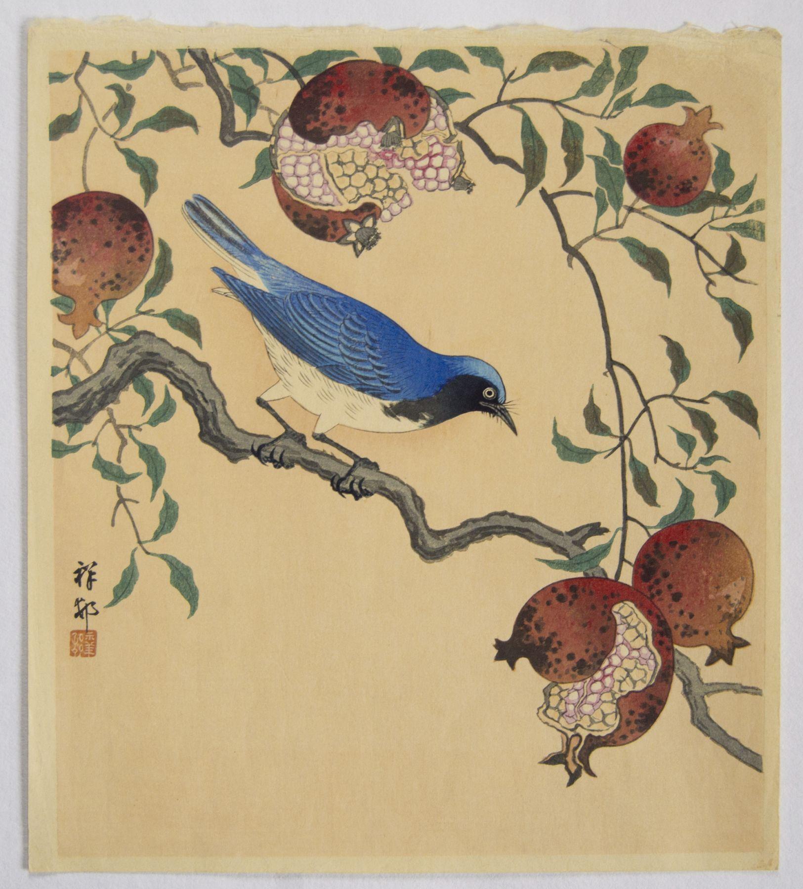 Ohara Koson (1877-1945), Blue and white flycatcher on a pomegranate branch
