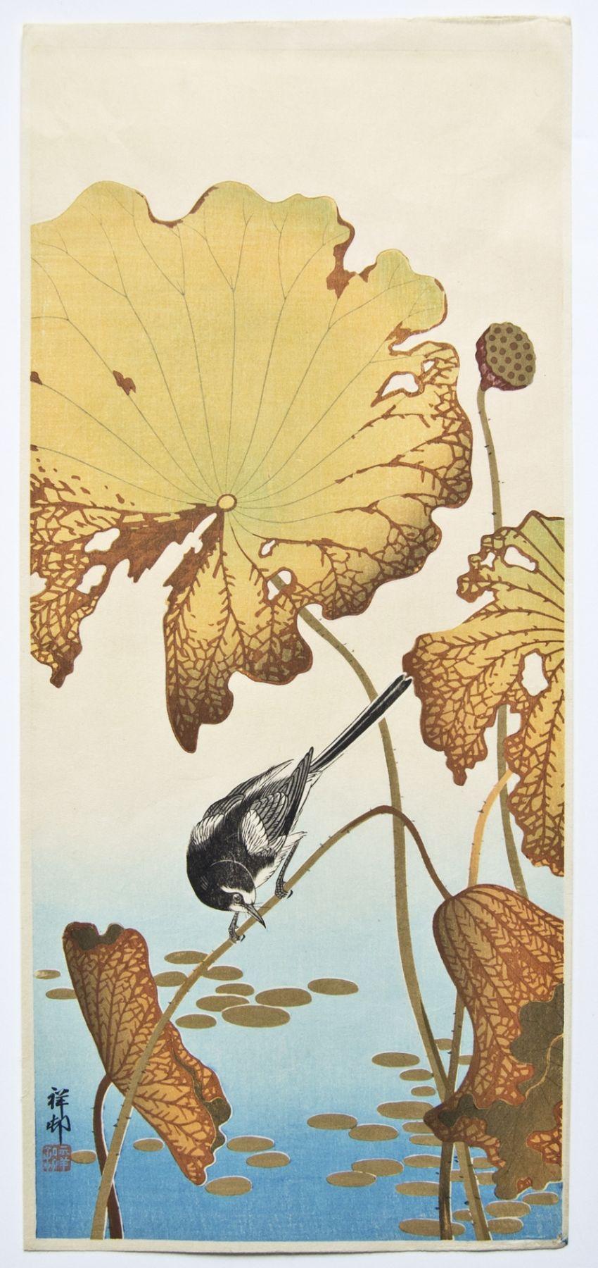 Ohara Koson (1877-1945), Wagtail with lotus