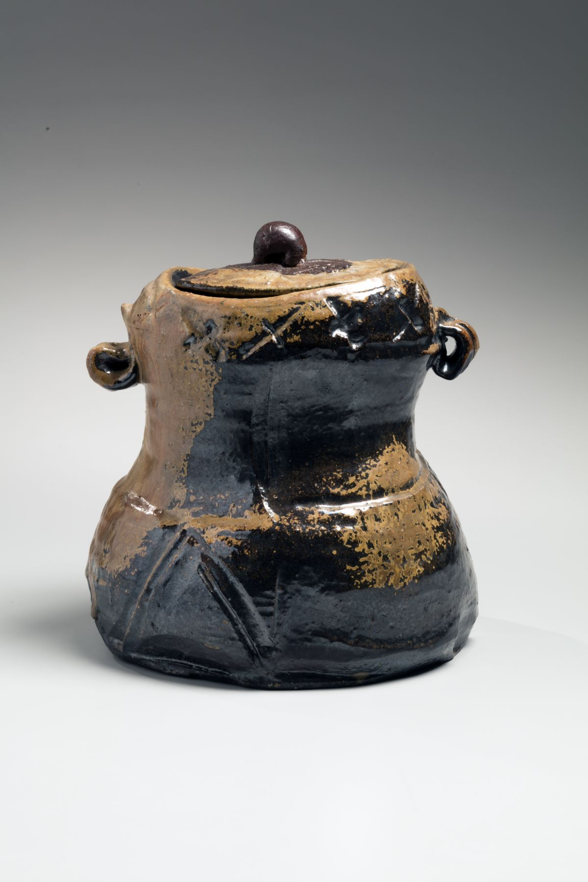 Abe Ajin (b. 1938), Bizen water jar with extensive kiln effect and matching color