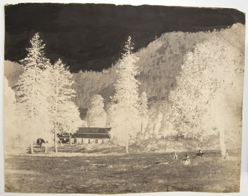National, view of house in forest