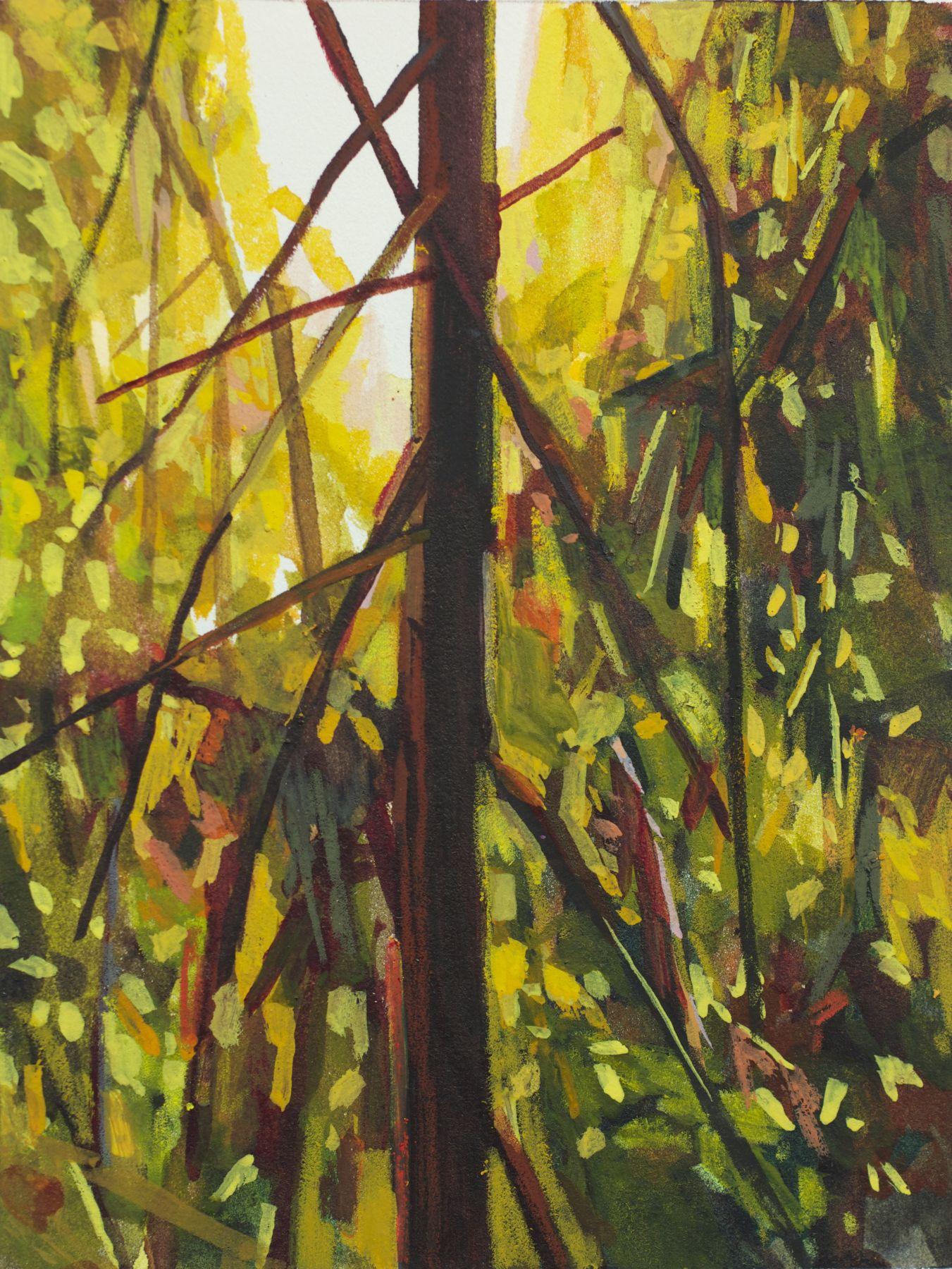 Tree, 2015, mixed media on paper