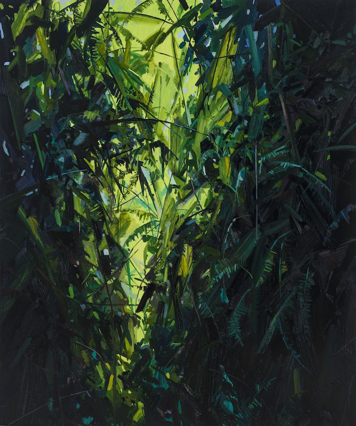 Leaves and Vines, 2017, Oil on canvas