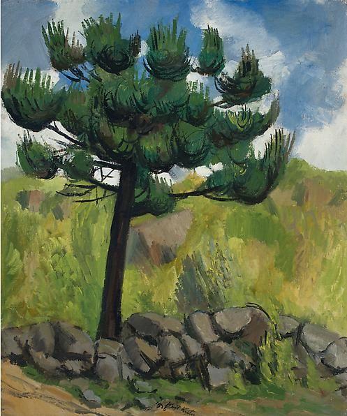 Maine Pine, 1926