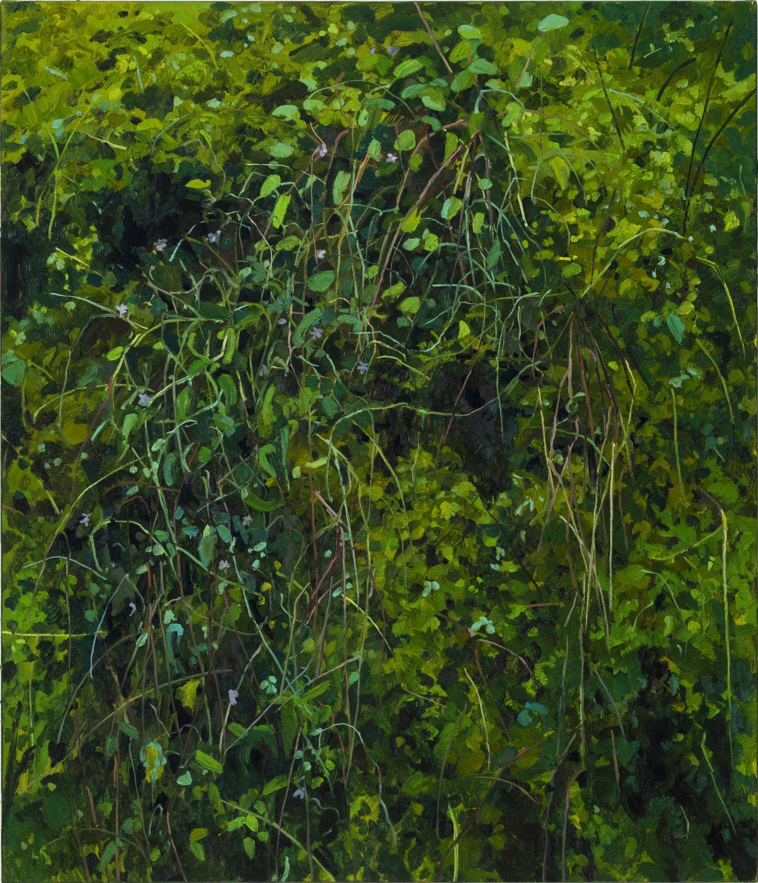 Moss and Grass, 2017