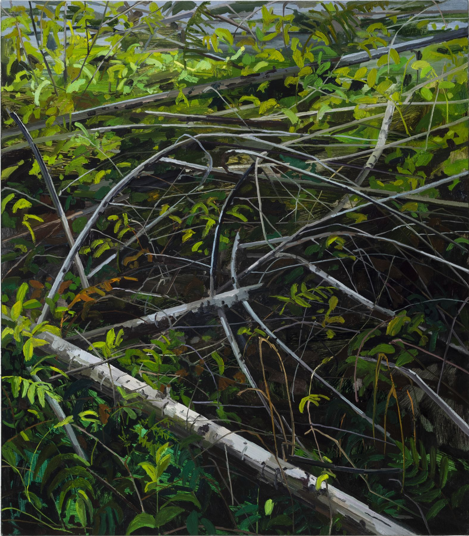 Branches, 2018