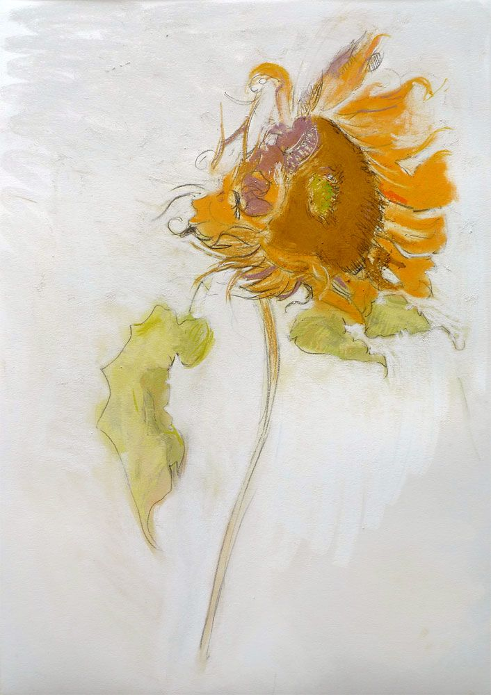 Sunflower (Ochre), 2010, Pastel on paper