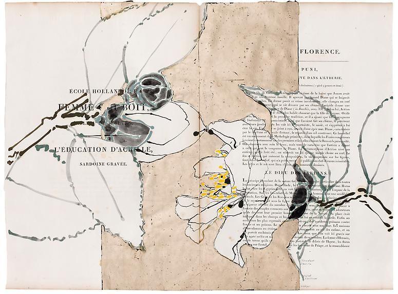 Robert Kushner, L'Education D'Achille, 2012