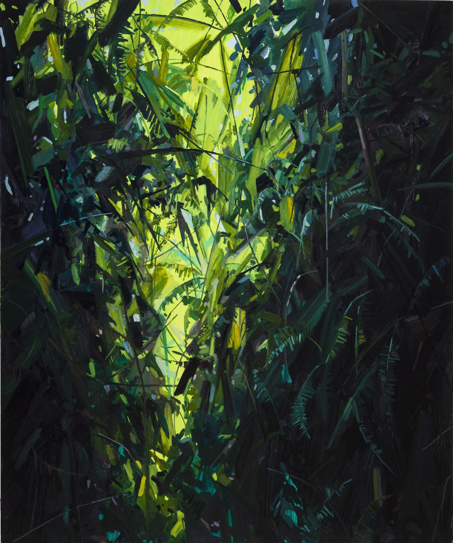 Leaves and Vines, 2017