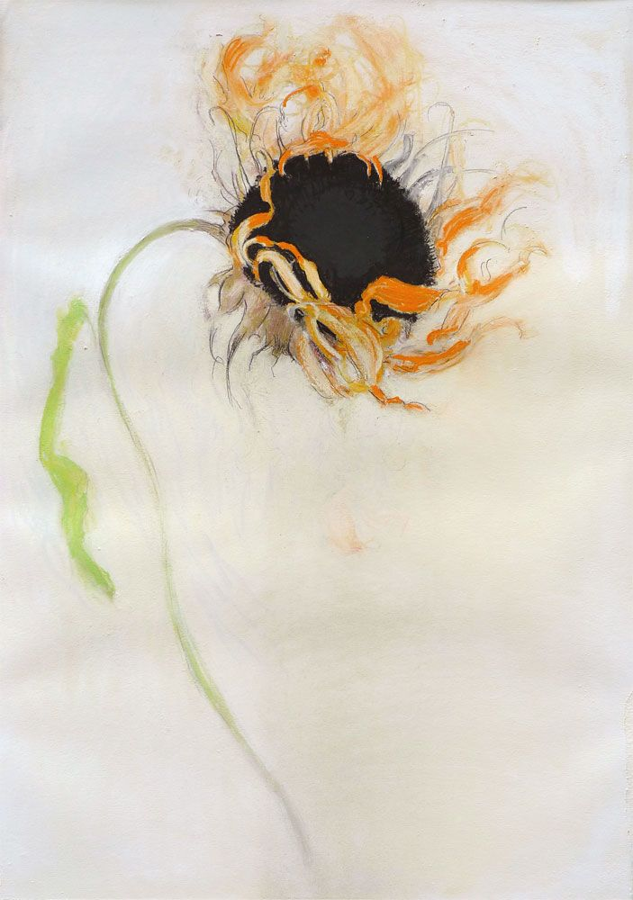 Sunflower (Black), 2010, Pastel on paper