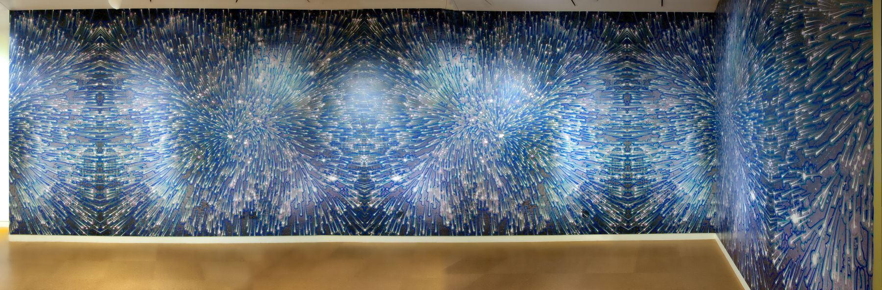 Barbara Takenaga, Space | 42