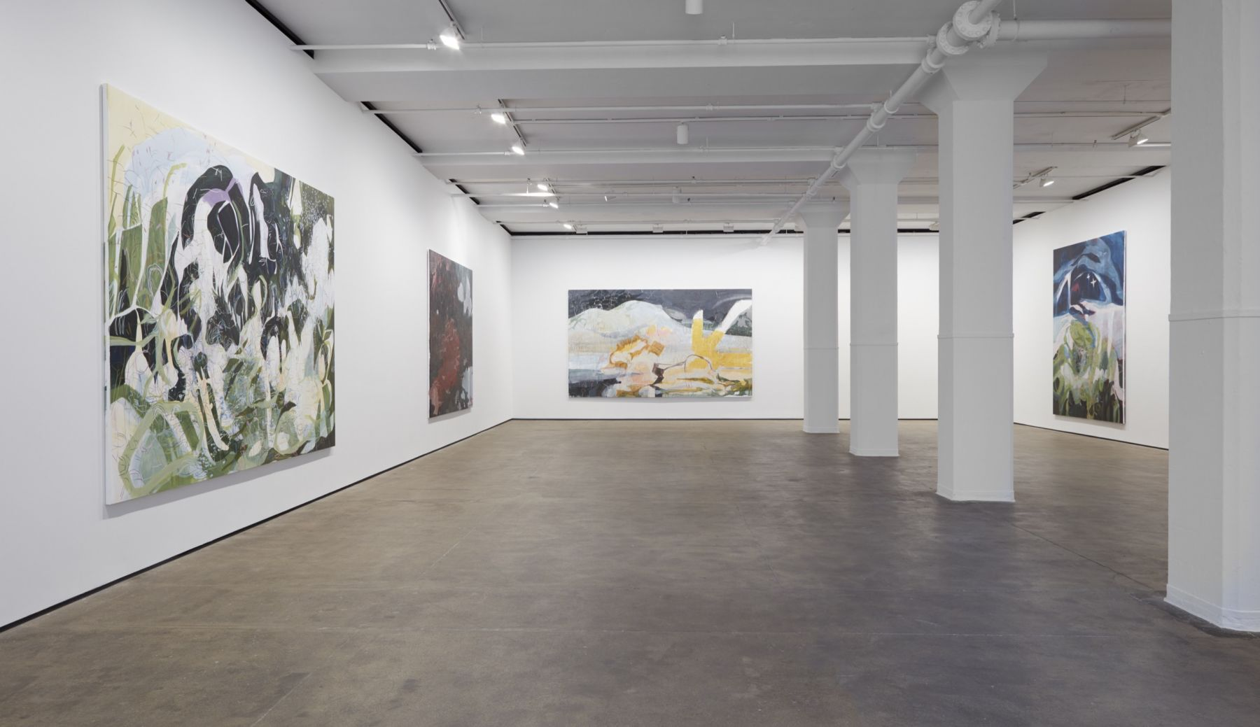 Installation view of Janaina Tschäpe: HumidGray and ShadowLake at Sean Kelly, New York