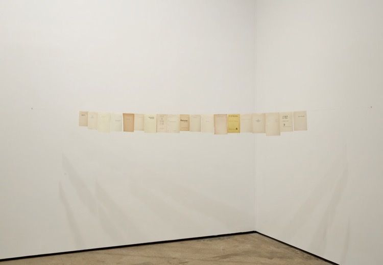 Valeska Soares Sean Kelly Gallery