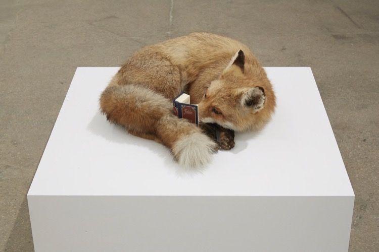 Javier Téllez Sean Kelly Gallery