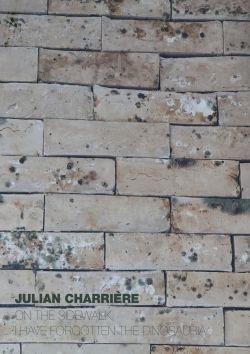 Julian Charriere Sean Kelly