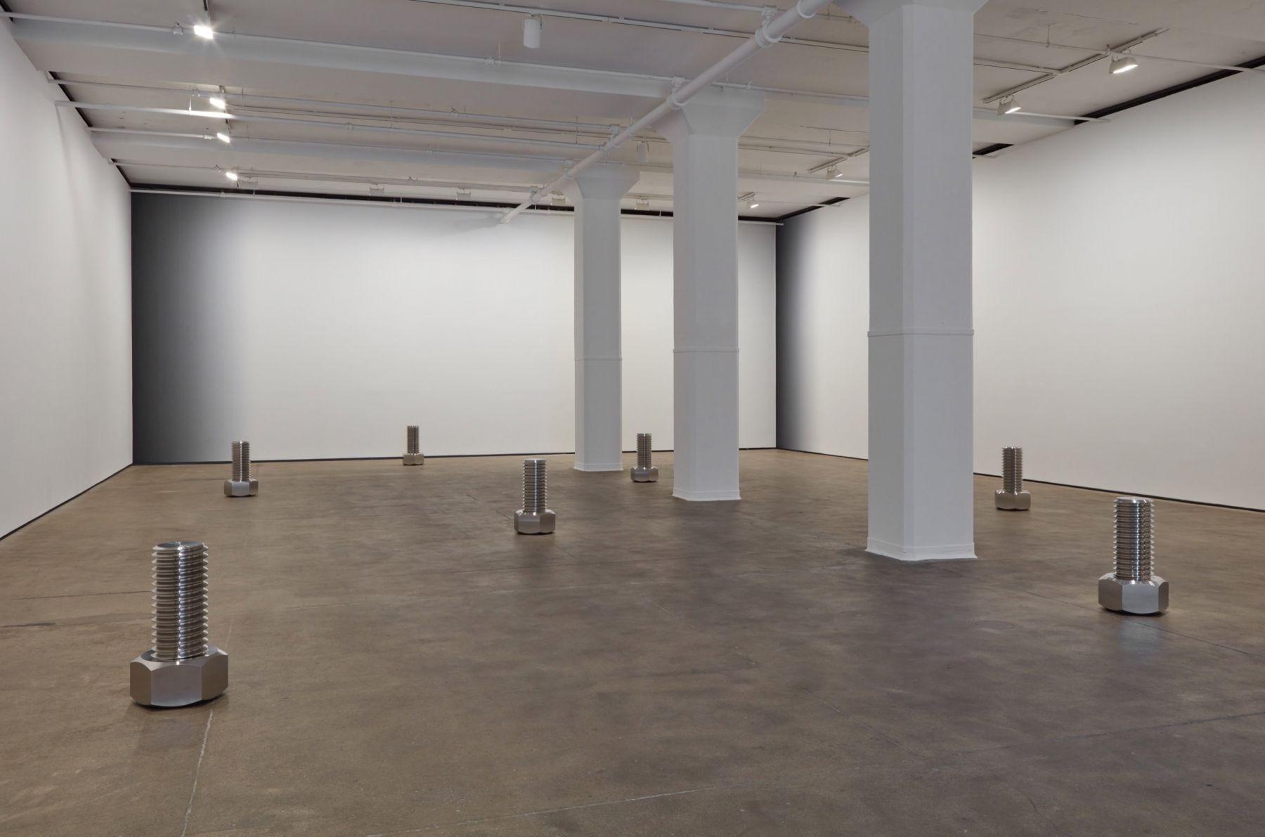 Iran do Espírito Santo Sean Kelly Gallery