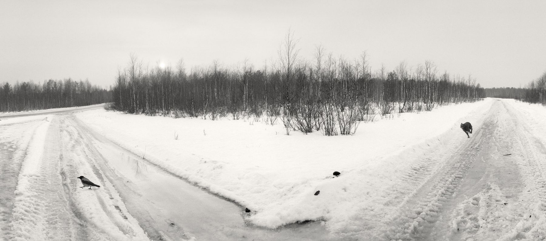 Paanajärvi, Karelia, Russia