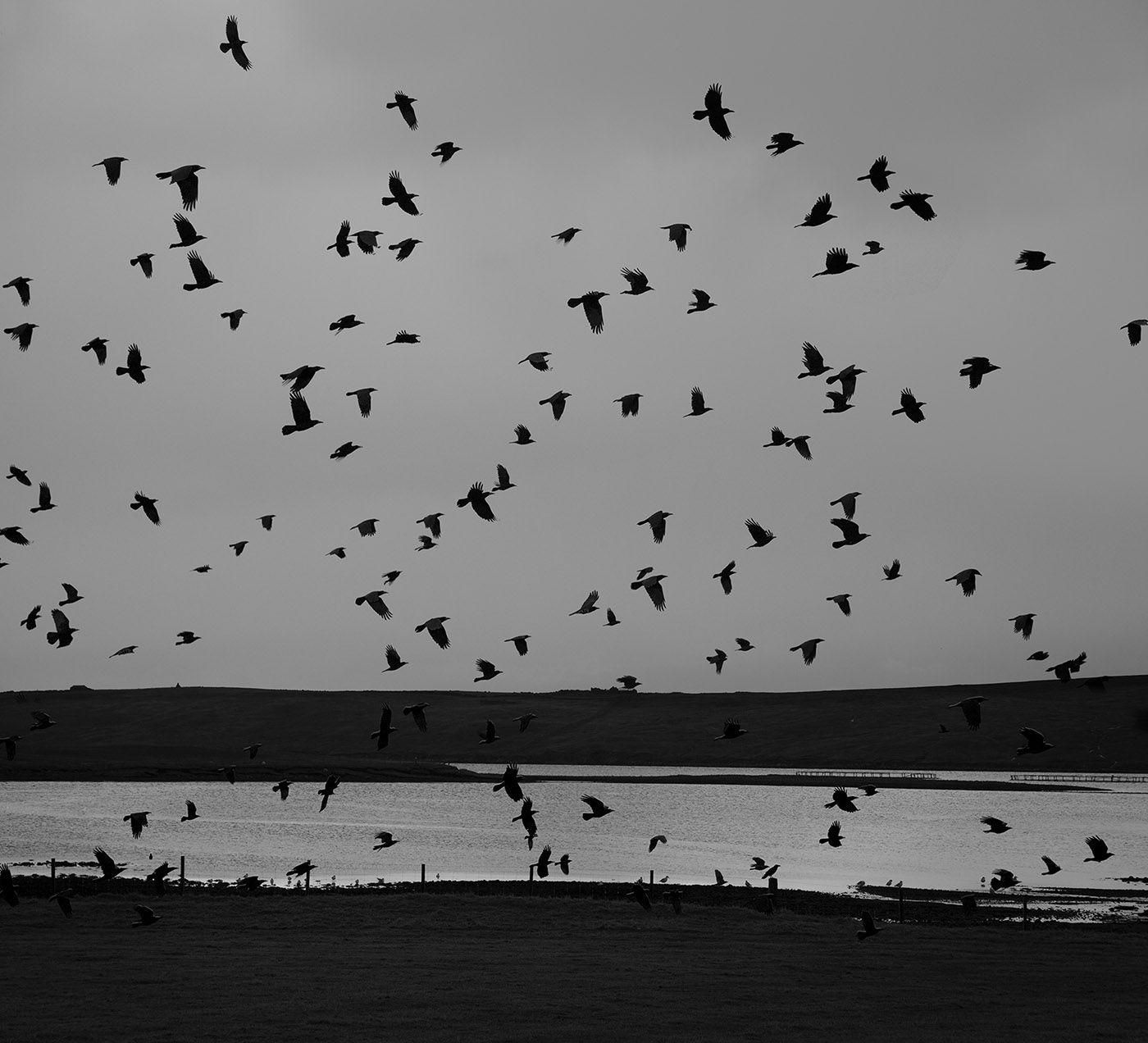 Hamnavoe, Yell, Shetland