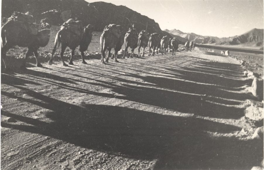 Pamir Road
