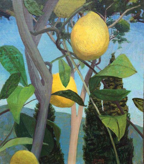 Bramasole Lemon Tree, Cortona, 2016