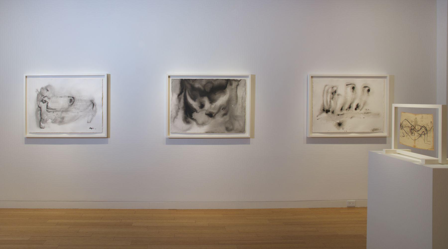 Whitney McVeigh: Elegy to Nature