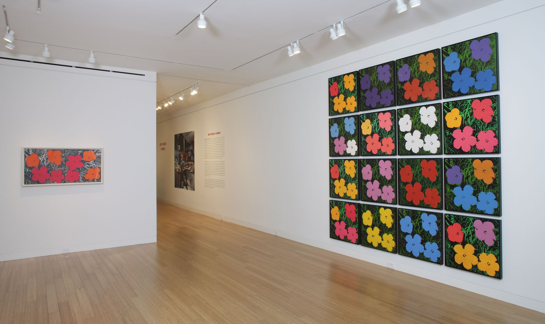Andy Warhol, Flowers, 1964/1965., © 2012 The Andy Warhol Foundation for the Visual Arts, Inc./Artists Rights Society (ARS), New York.