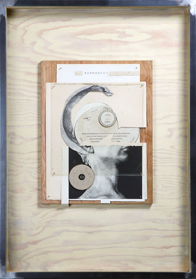 "Hans Neleman's Reproduct. 2015. Mixed Media. 24"" x 34"" x 4"""