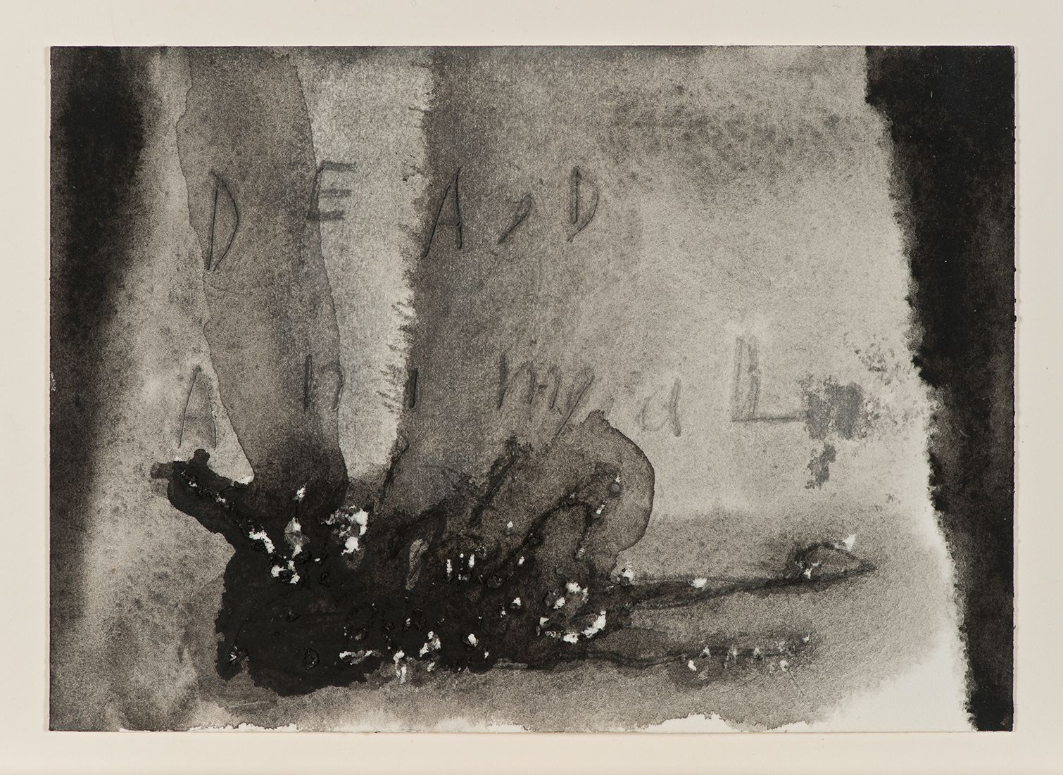 David Lynch, Dead Animal