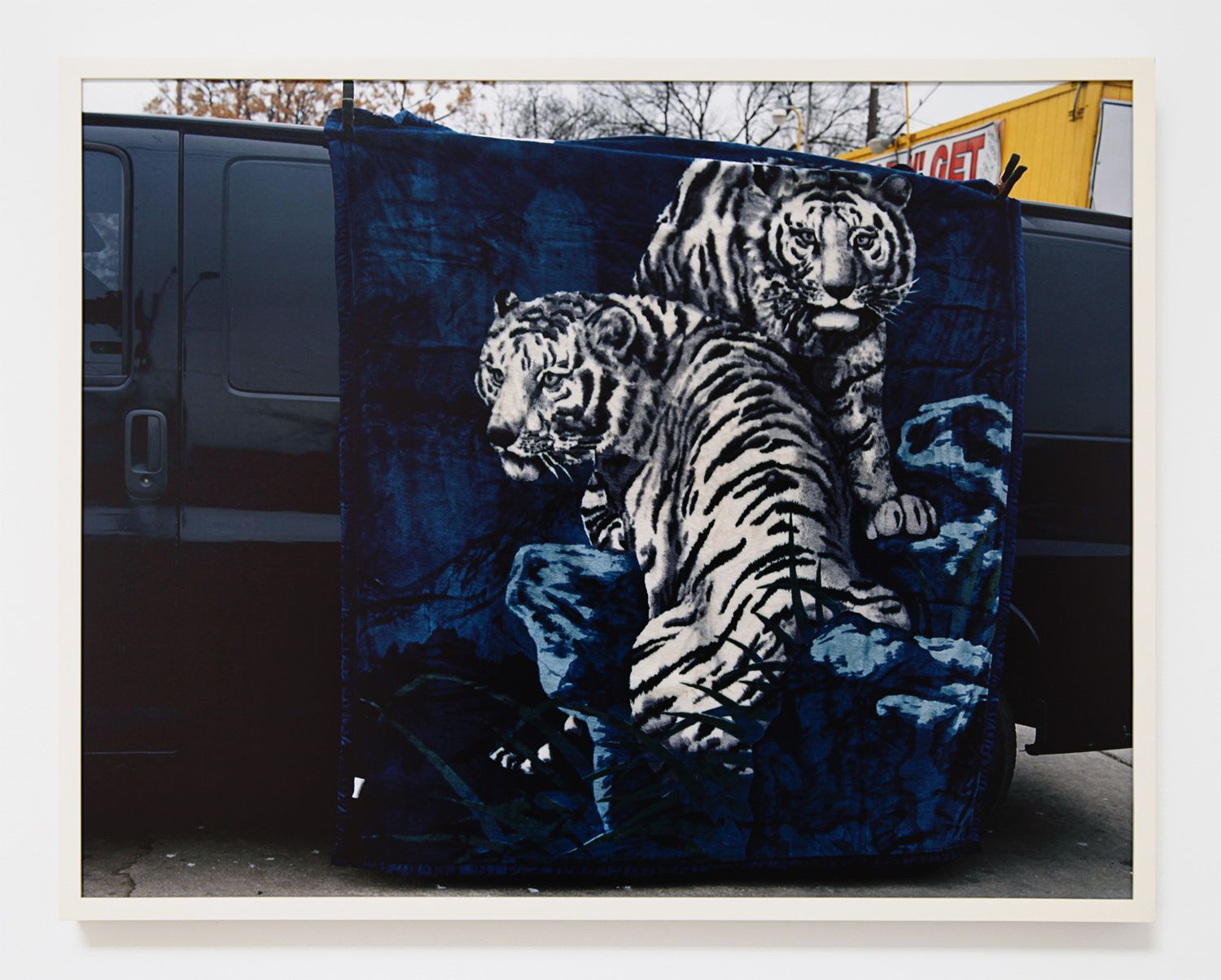 Justine Kurland, Tigers on Cesar Chavez, 2011