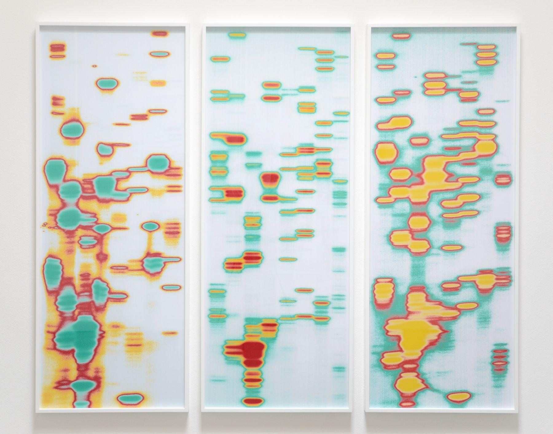 Iñigo Manglano-Ovalle, Christopher Grimes Gallery
