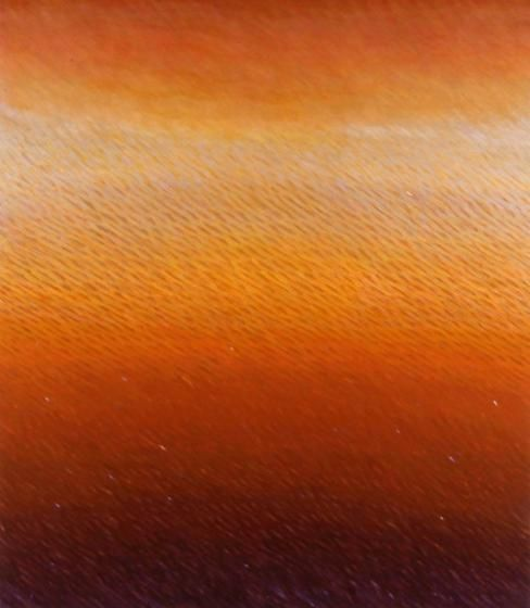 Joan Vennum, Unsuspecting Region, 2005, oil on canvas, 80 x 70 inches/203.2 x 177.8 cm