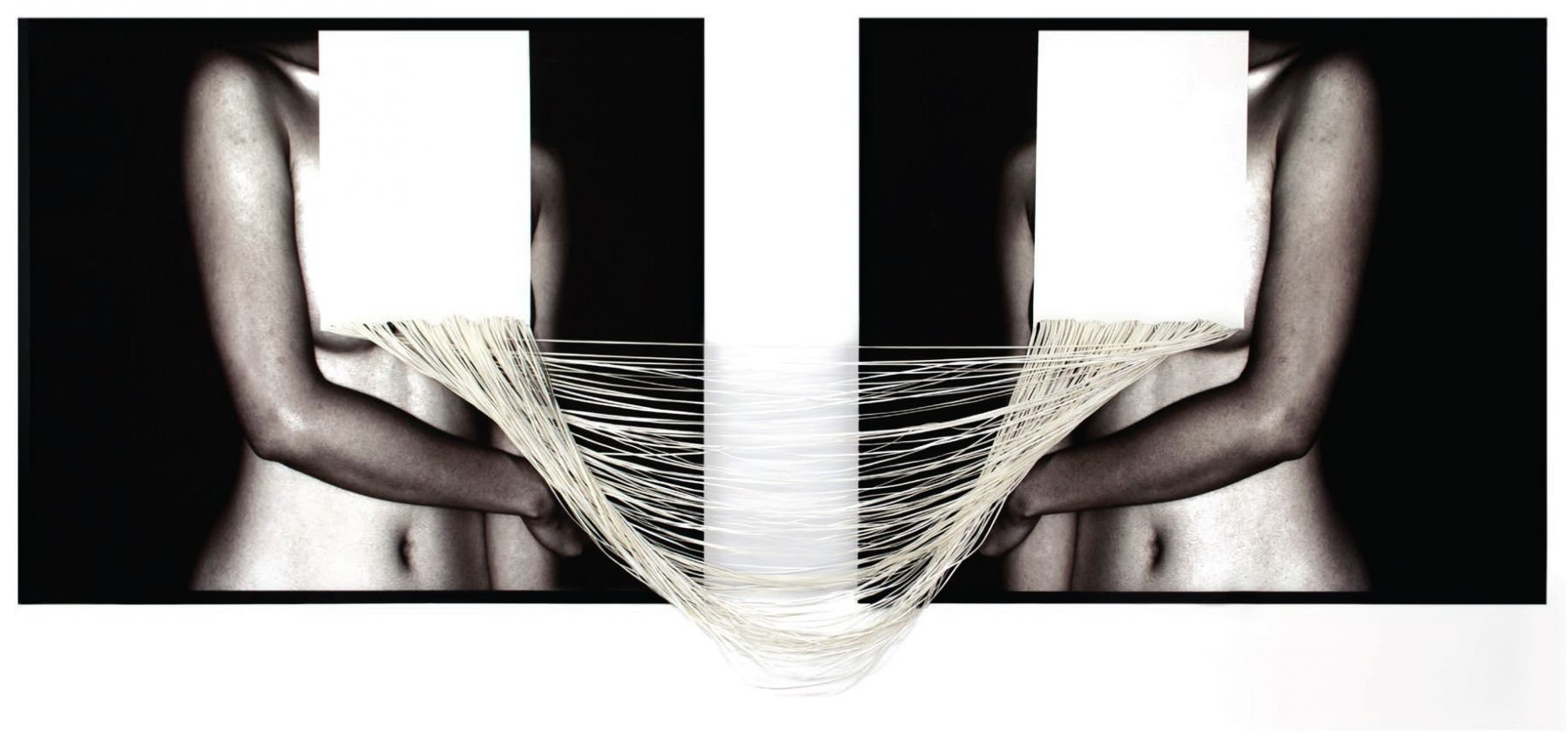 Tension, 2015, c-type print and hand cut canvas, 36.5 x 97.1 inches/92.7 x 246.7 cm