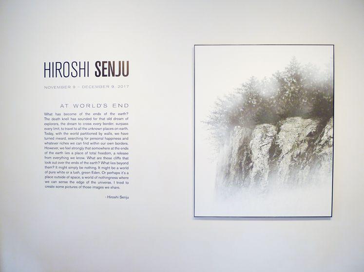 HIroshi Senju (千住博)