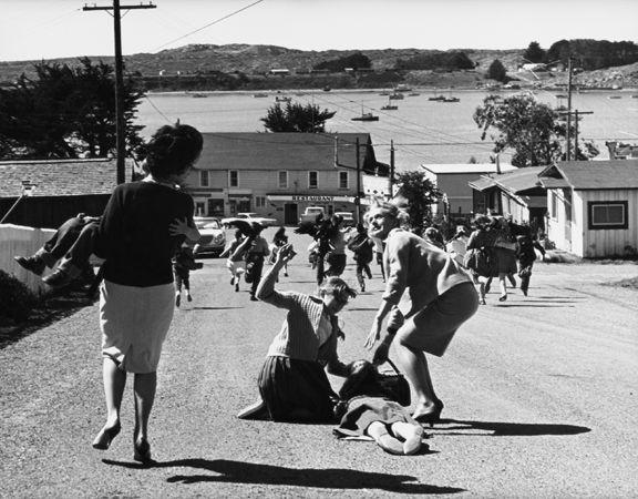 """""""The Birds,"""" (Fleeing), 1963, 11 x 14 Vintage Silver Gelatin Photograph"""