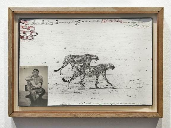 Cheetahs on the Taru Desert for the End of the Game, June, 1960, Silver Gelatin Photograph with Ink, Handprint and Polaroid