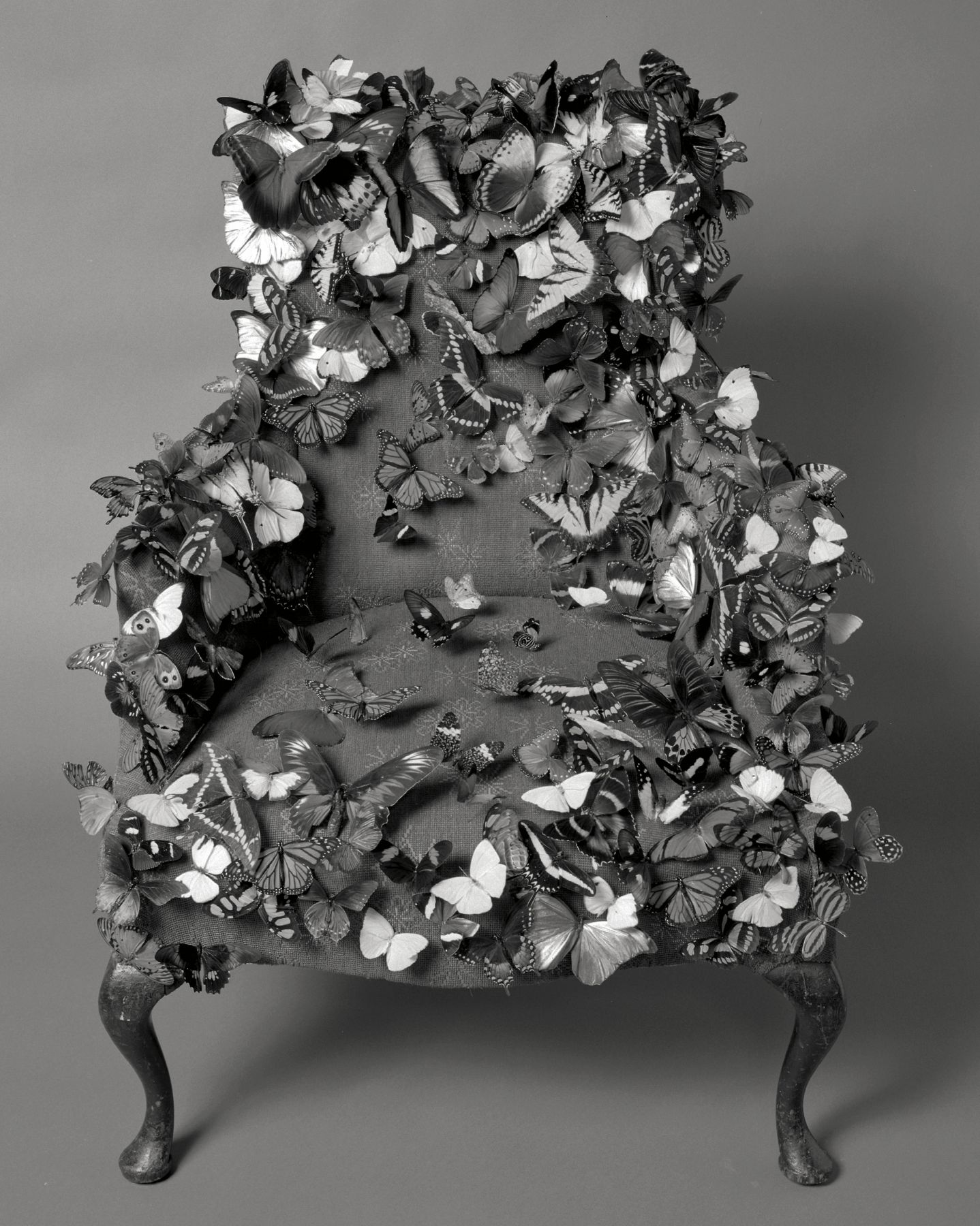 Butterfly Chair, 1995