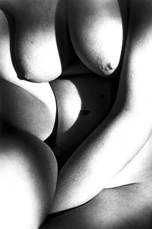 Untitled (Nude Close-up, Curves), 1991, 14 x 11 Silver Gelatin Photograph, Ed. 25