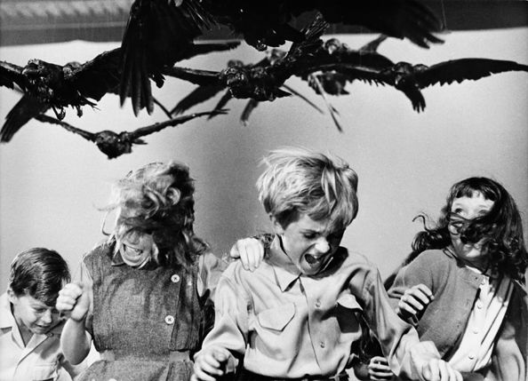 """""""The Birds"""" (kids attacked by ravens), 1963, 11 x 14 Vintage Silver Gelatin Photograph"""