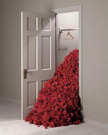 Rose Closet, 2001, Archival Pigment Print
