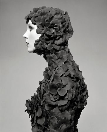 Rose Petal Suit, 2005, Archival Pigment Print