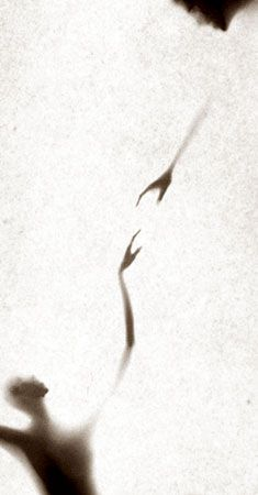 Osmosis, Untitled #0102446, 40 x 20 Silver Gelatin Photograph, Copper, and Glass, Ed. 10