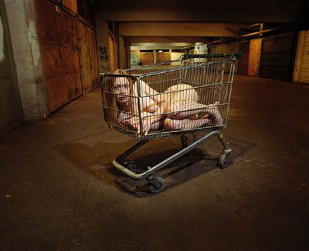 Girl In A Trolley, 1999, 20 x 24 Lambda Print, Ed. 15