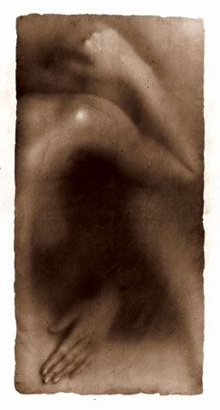 Osmosis, Untitled #9905465, 1999, 40 x 20 Silver Gelatin Photograph, Copper, and Glass, Ed. 10
