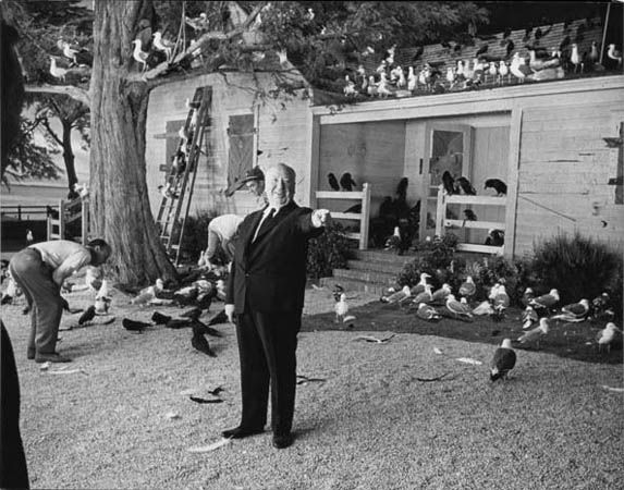 Alfred Hitchcock, The Birds, 1963, 23-3/8 x 30 Archival Pigment Print, Ed. 10