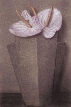 White Anthuriums, Grey Vase, 1980, 19 x 13 Fresson Print