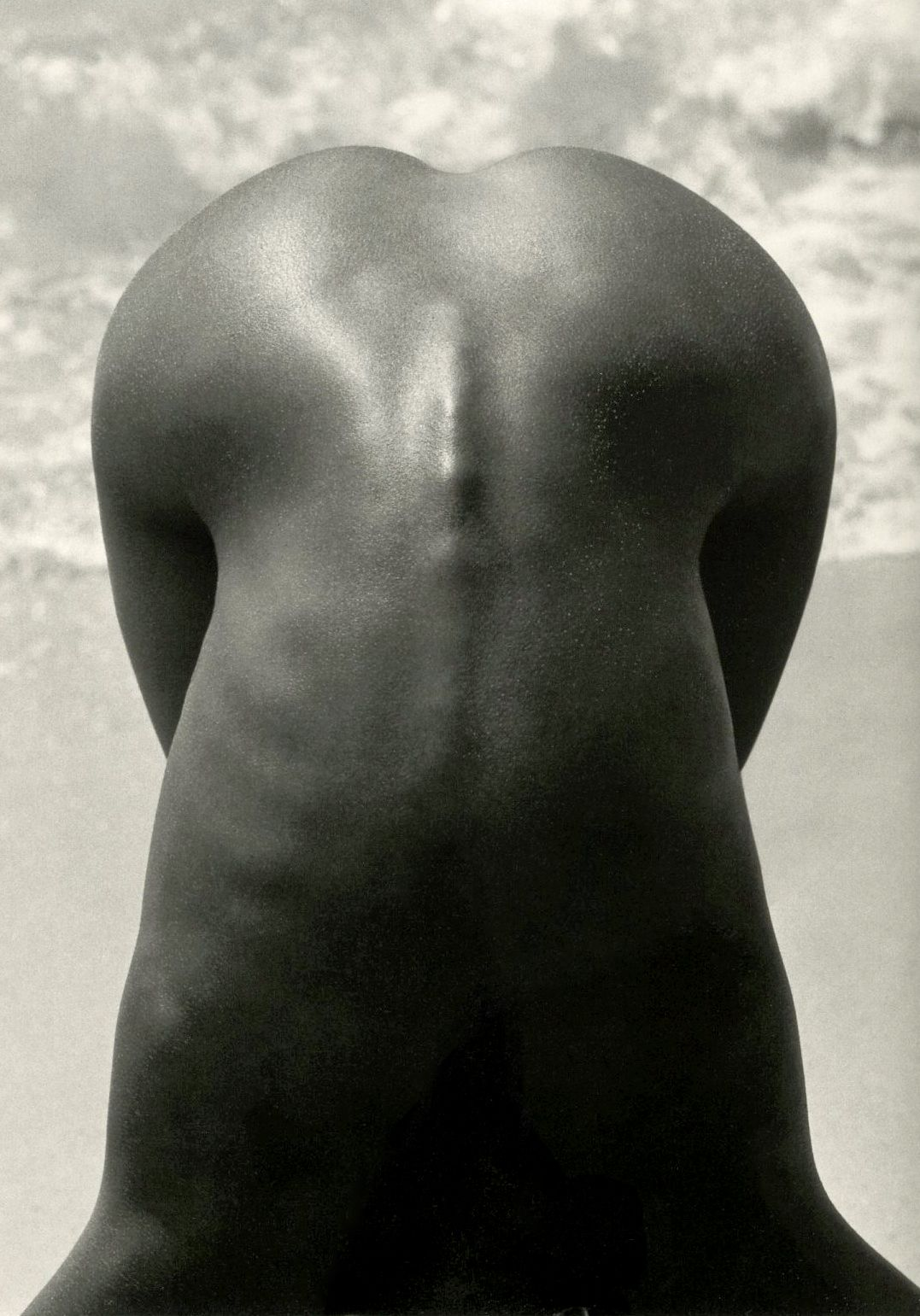 Herb Ritts Female Nude (Detail), Hawaii, 1989