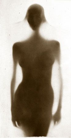 Osmosis, Untitled #9904278, 1999, 40 x 20 Toned Silver Gelatin Photograph, Copper, and Glass, Ed. 10